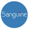 SANGUINE GLOBAL STAFF RESOURCES CORP.